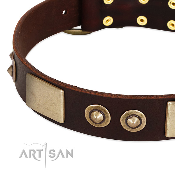 Corrosion proof decorations on genuine leather dog collar for your pet