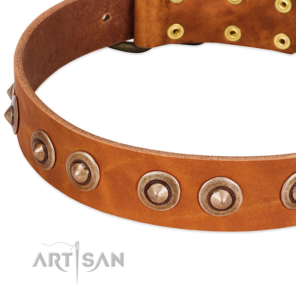 Durable buckle on full grain leather dog collar for your pet