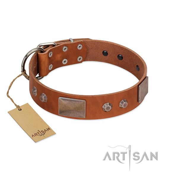 Unique full grain leather dog collar with durable buckle