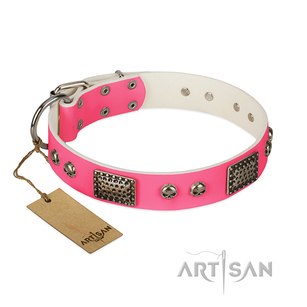 Easy to adjust full grain genuine leather dog collar for daily walking your dog