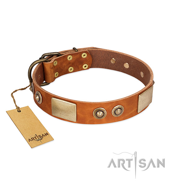 Easy to adjust full grain genuine leather dog collar for everyday walking your four-legged friend