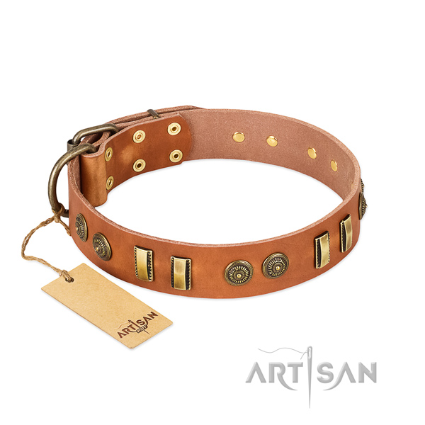 Corrosion resistant buckle on full grain leather dog collar for your canine