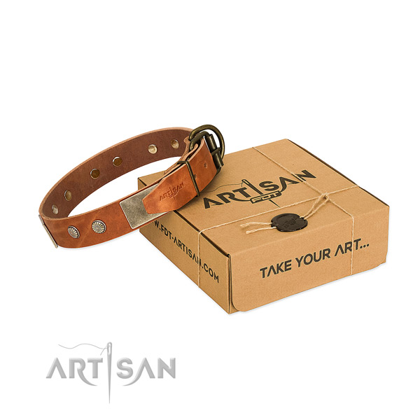 Rust-proof traditional buckle on dog collar for daily use