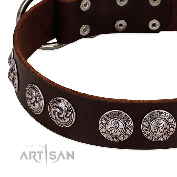 Stunning genuine leather collar for your dog stylish walks