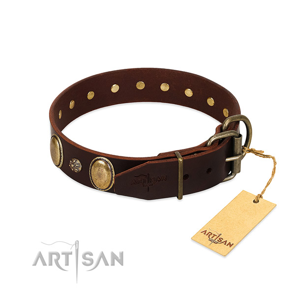 Everyday use high quality leather dog collar