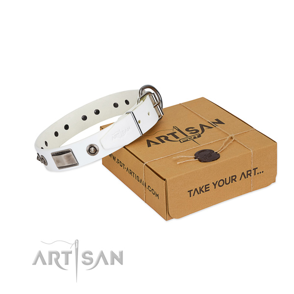 Significant dog collar of full grain natural leather with studs