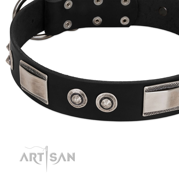 Top notch collar of full grain natural leather for your handsome doggie
