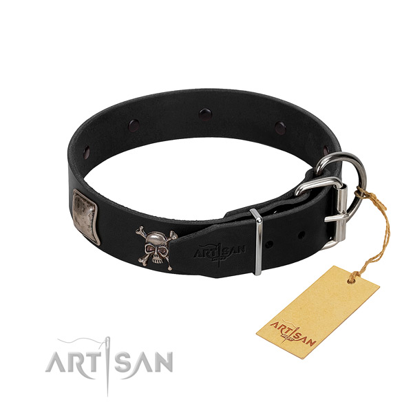 Exquisite leather collar for your beautiful pet