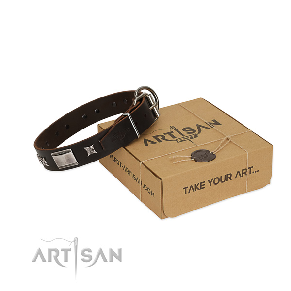 Fine quality collar of full grain leather for your attractive canine