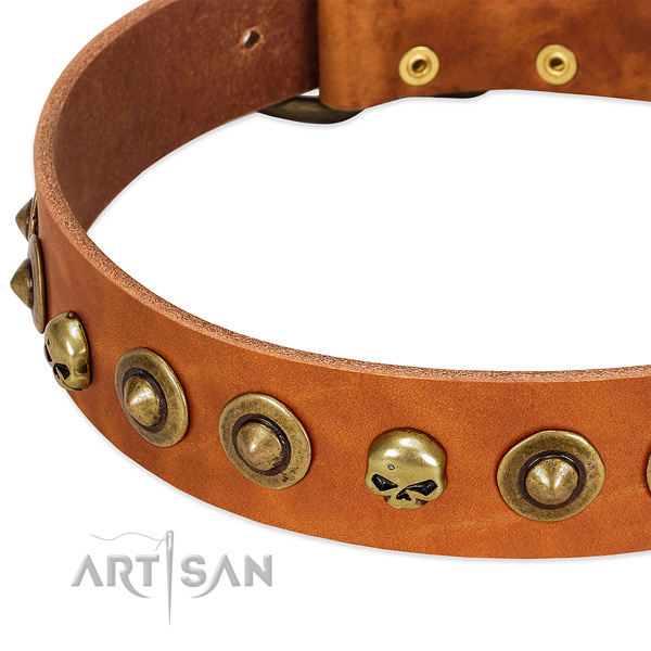 Exquisite adornments on full grain genuine leather collar for your doggie