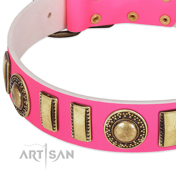 Durable leather dog collar for your stylish canine