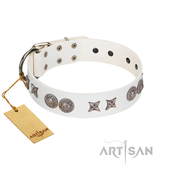 Natural leather collar with exceptional decorations for your four-legged friend