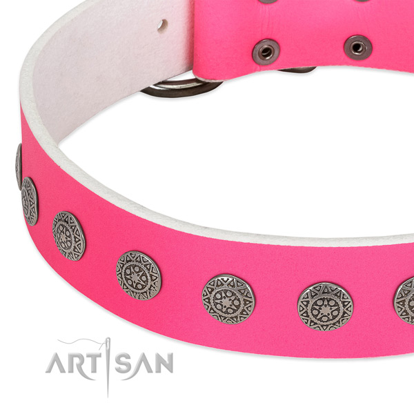 Remarkable genuine leather collar with adornments for your canine
