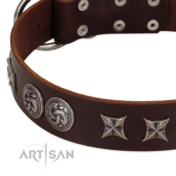 Full grain natural leather collar with stylish studs for your doggie