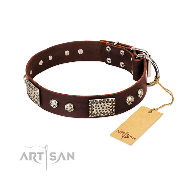 Easy to adjust full grain natural leather dog collar for daily walking your dog
