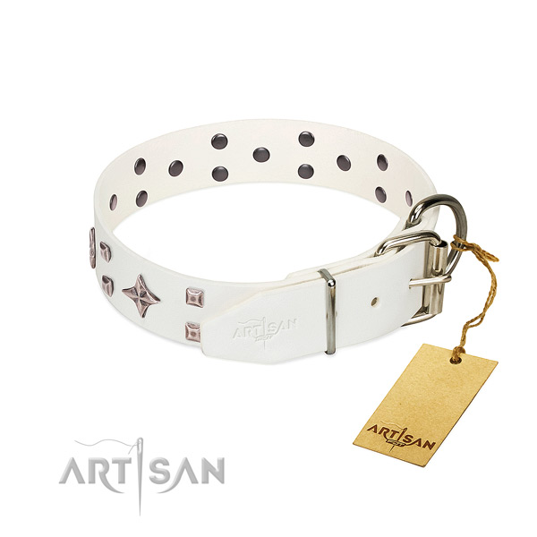 Significant leather collar for your pet walking