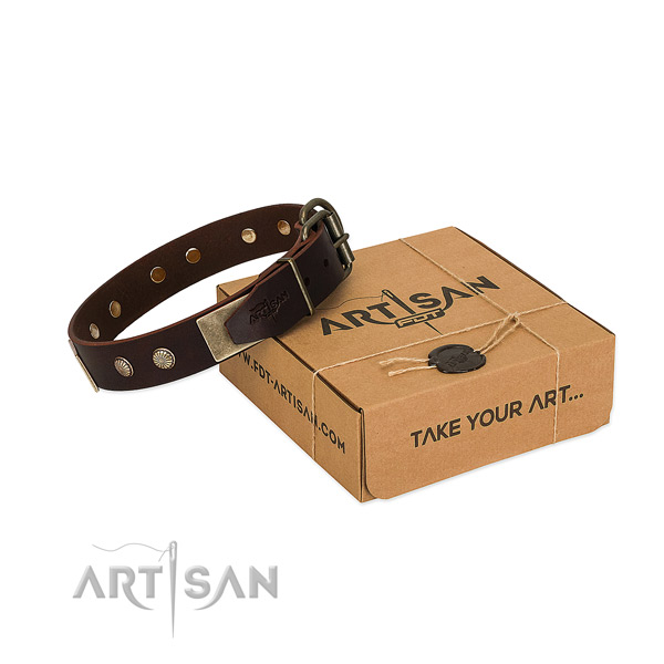 Reliable hardware on dog collar for comfortable wearing