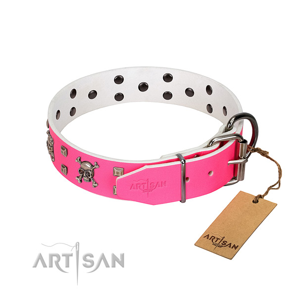 Durable studs on leather dog collar