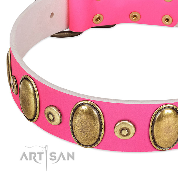 Gentle to touch full grain genuine leather collar with corrosion proof embellishments for your doggie