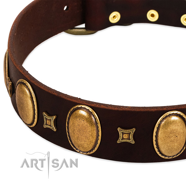 Genuine leather dog collar with reliable traditional buckle for everyday walking