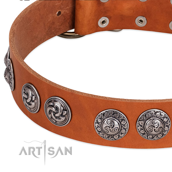 Fine quality leather dog collar for easy wearing