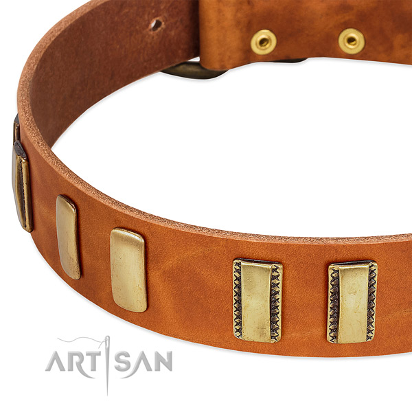 Flexible full grain leather dog collar with studs for fancy walking