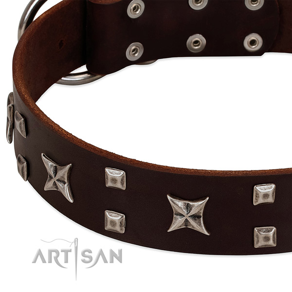 Flexible full grain natural leather dog collar with studs for easy wearing