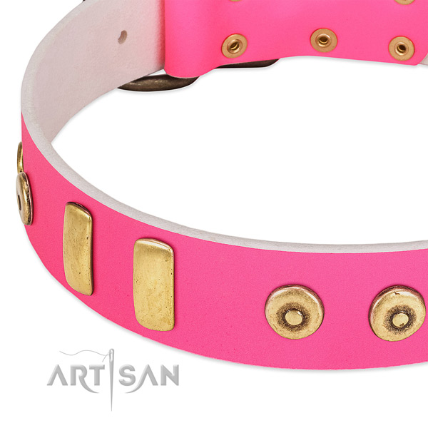 Top rate natural leather dog collar with top notch embellishments