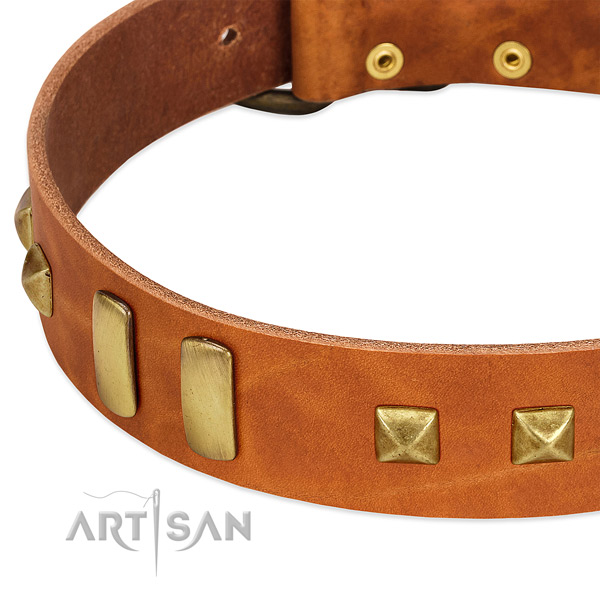Flexible natural leather dog collar with decorations for comfy wearing