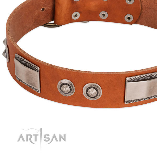 Comfortable full grain natural leather collar with adornments for your dog