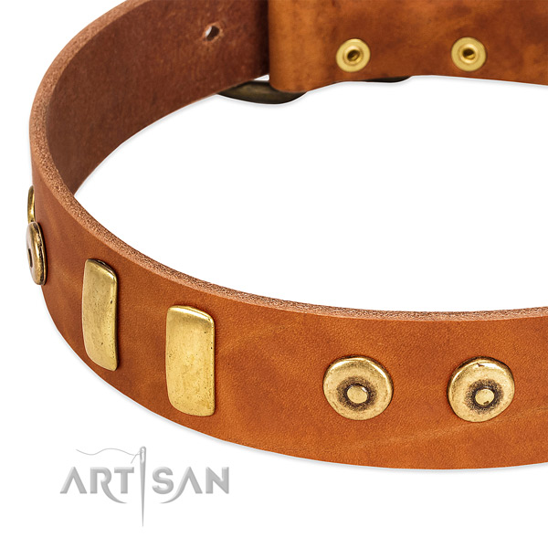 Strong genuine leather collar with remarkable adornments for your dog