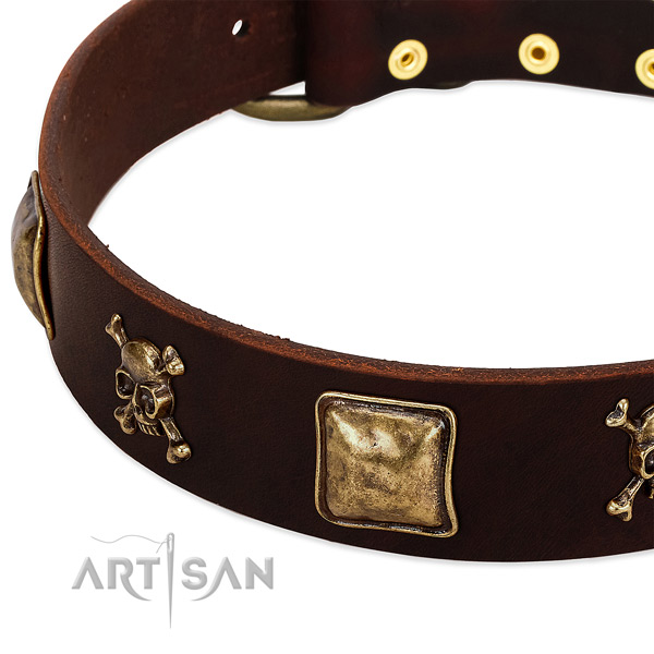 Soft to touch full grain leather dog collar with trendy studs