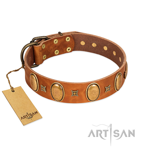 Full grain leather dog collar with significant studs for comfy wearing