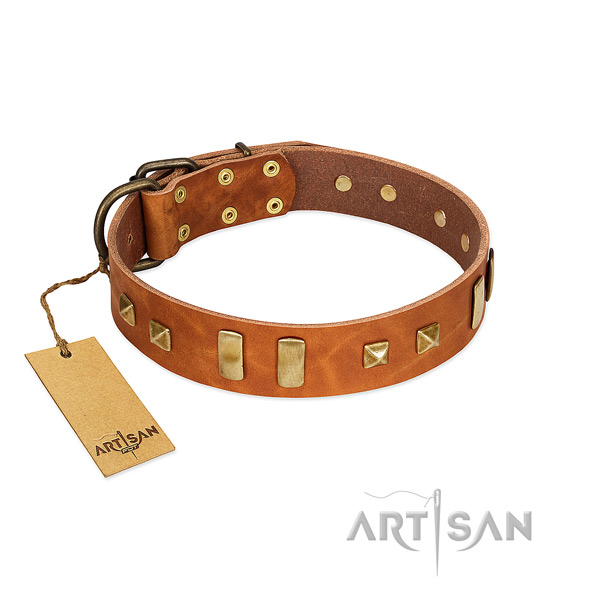 Natural leather dog collar with rust-proof fittings