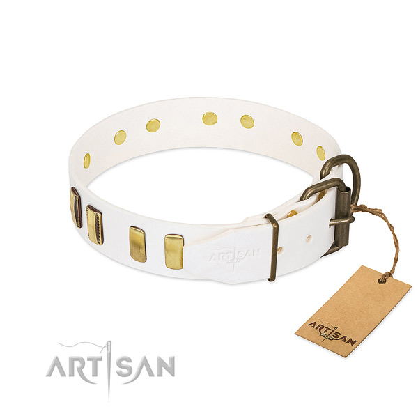 Best quality full grain natural leather dog collar with strong traditional buckle