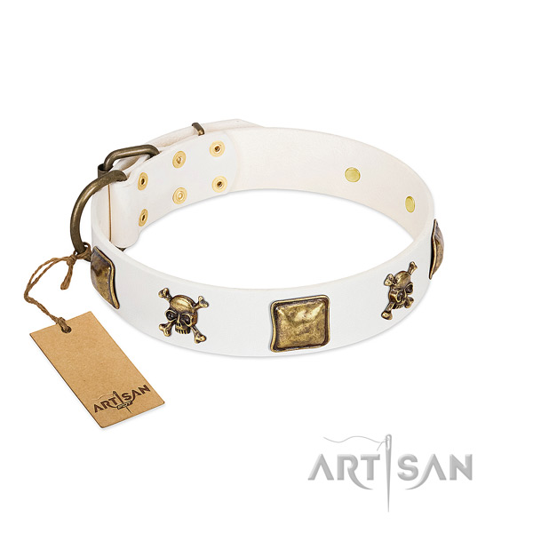 Inimitable leather dog collar with durable studs