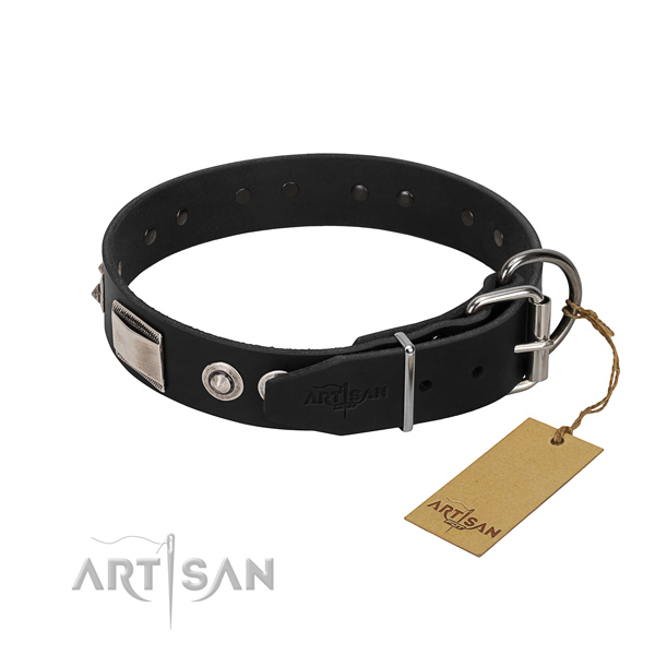 Studded collar of full grain leather for your four-legged friend