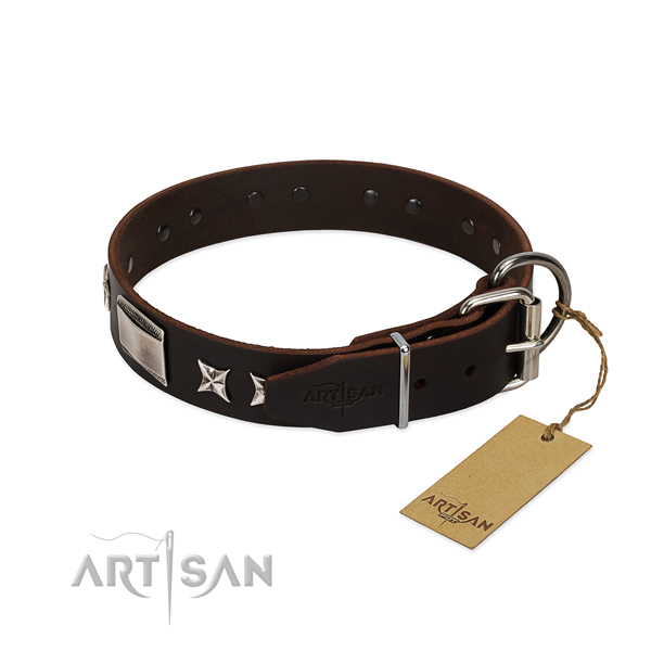 Stylish collar of natural leather for your attractive four-legged friend