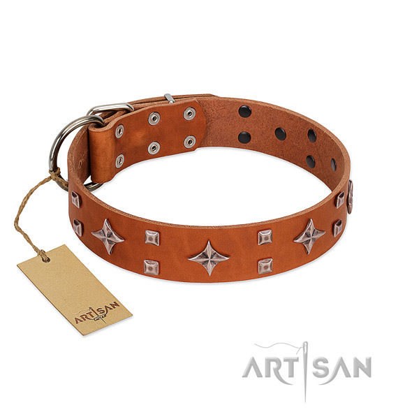Remarkable genuine leather collar for your doggie stylish walking