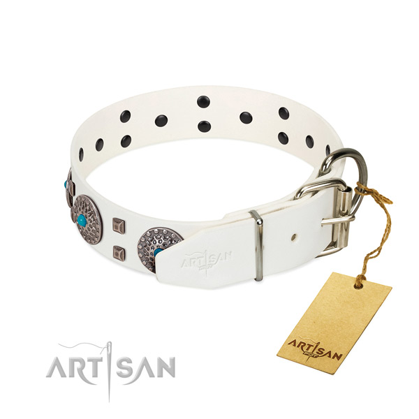 Best quality natural leather dog collar with adornments for comfy wearing