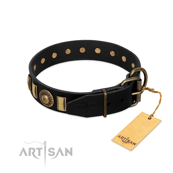 Durable leather dog collar with embellishments