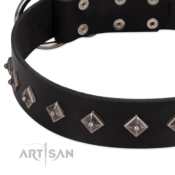 Comfortable collar of leather for your impressive pet