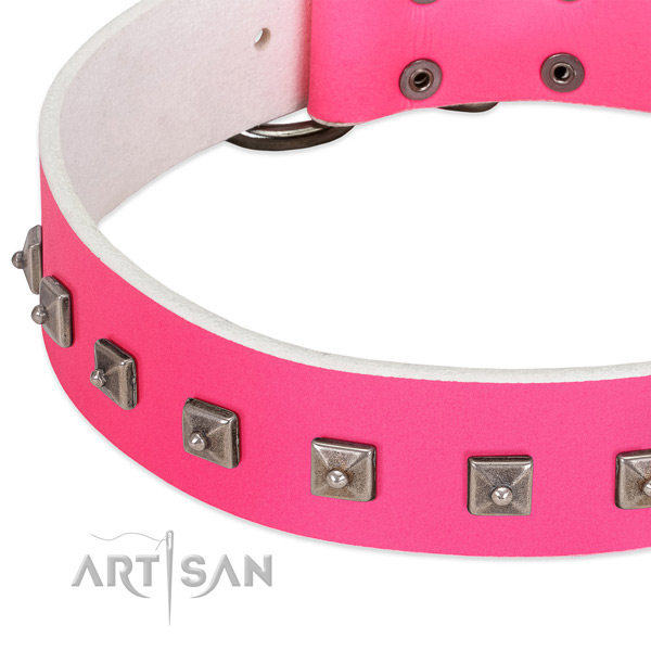 Top rate full grain natural leather dog collar with remarkable embellishments