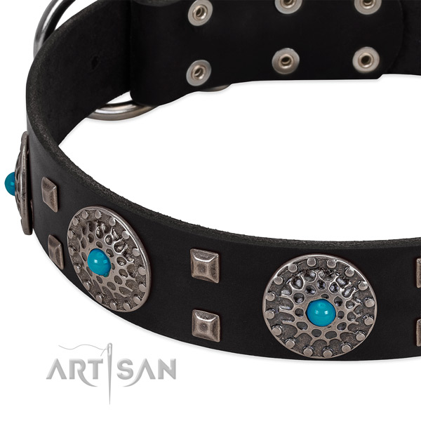 Best quality full grain natural leather dog collar with stylish embellishments
