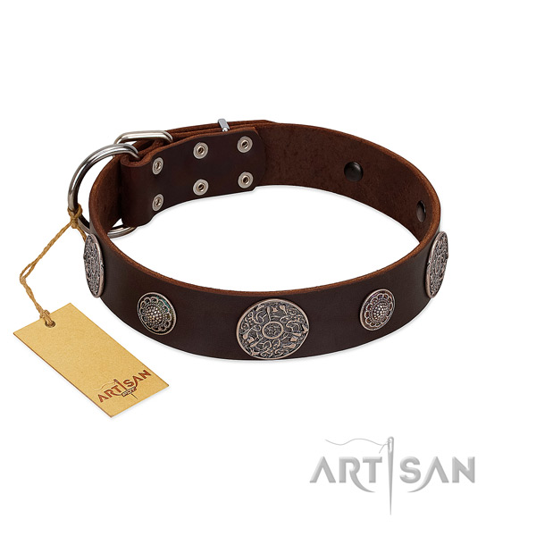 Studded full grain genuine leather collar for your stylish pet