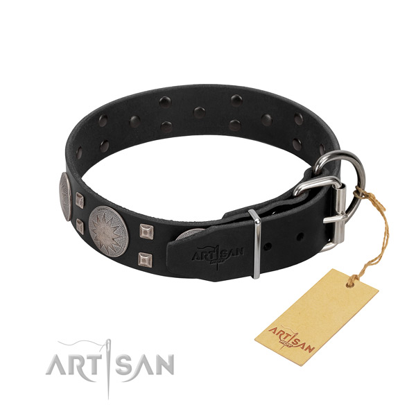 Significant leather dog collar for daily walking your pet