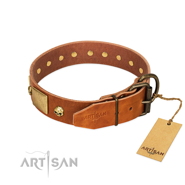 High quality leather dog collar with rust resistant decorations