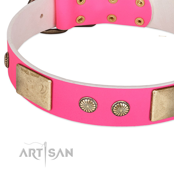 Rust resispinkt studs on leather dog collar for your doggie