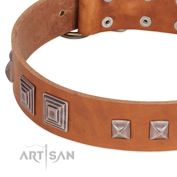 Corrosion proof fittings on genuine leather dog collar for daily use