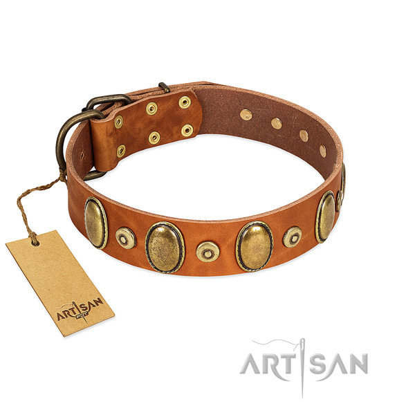 Strong hardware on dog collar for everyday use